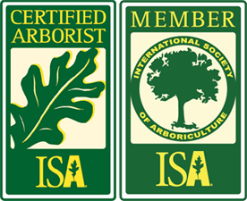 ISA Certified Arborist